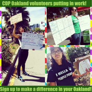 cdpvols love your neighborhood day 6.2.15